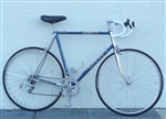 "60cm RALEIGH Super Course Chromed Lugged Road Bike ~6'0""-6'3"""